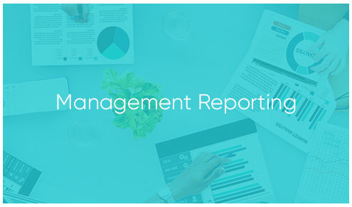 Management Reporting by Tourvest Travel Services