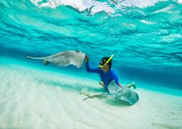 Snorkelling in the Maldives